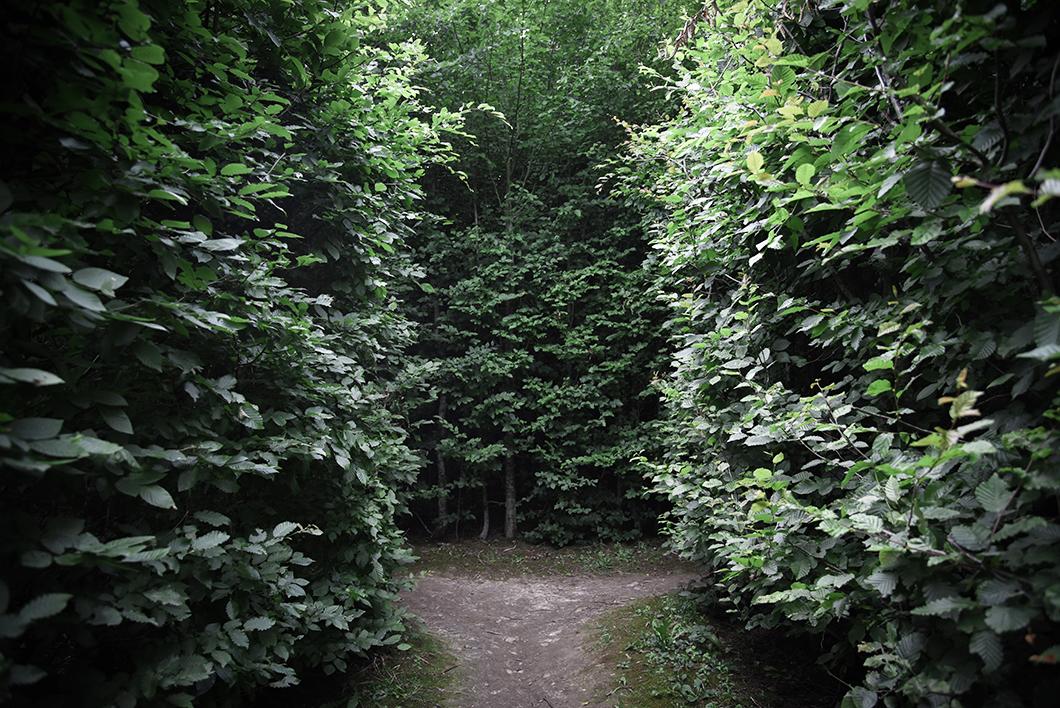 Labyrinthes d'Hauterives - Week end insolite dans la Drôme