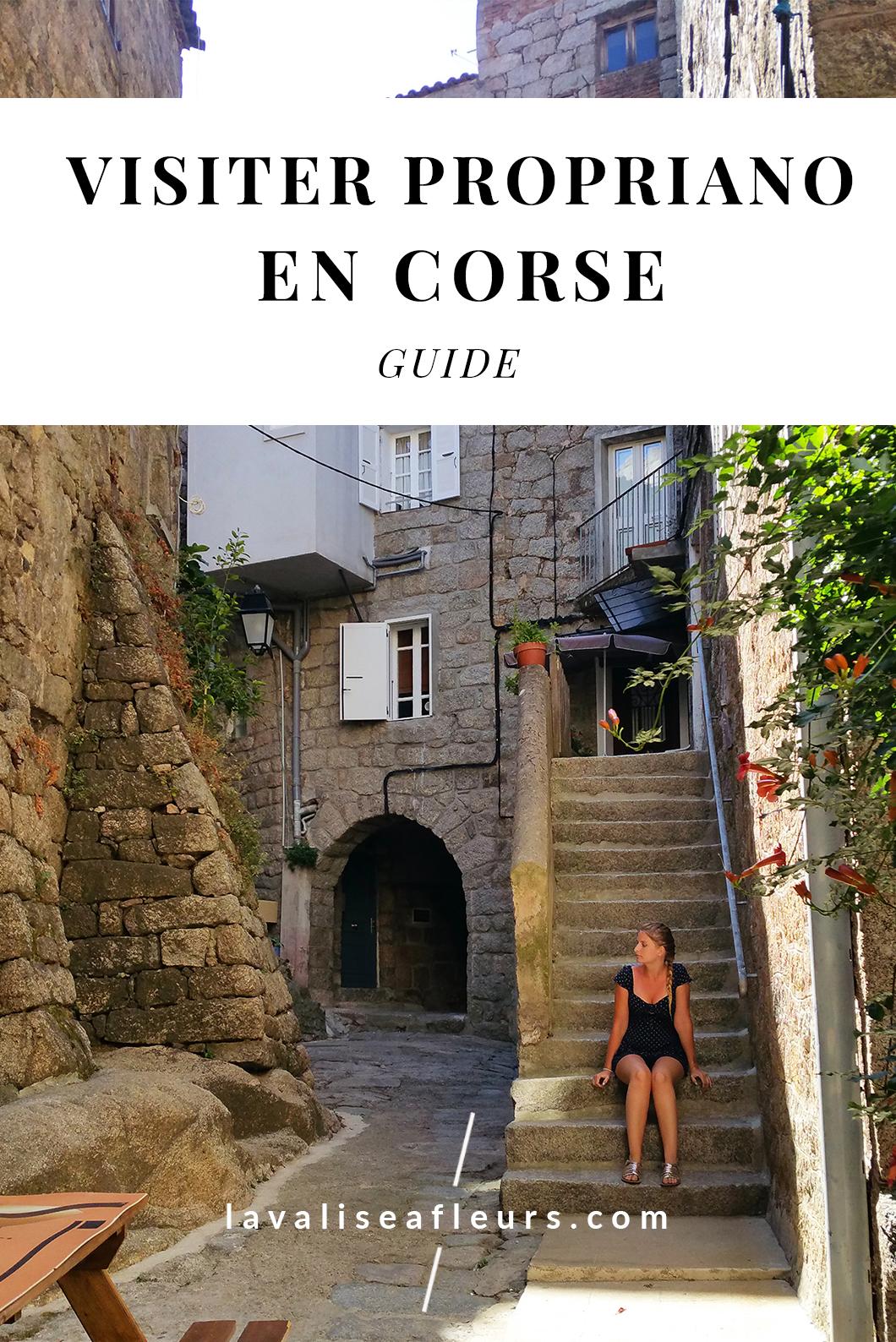 Que faire à Propriano en Corse ?