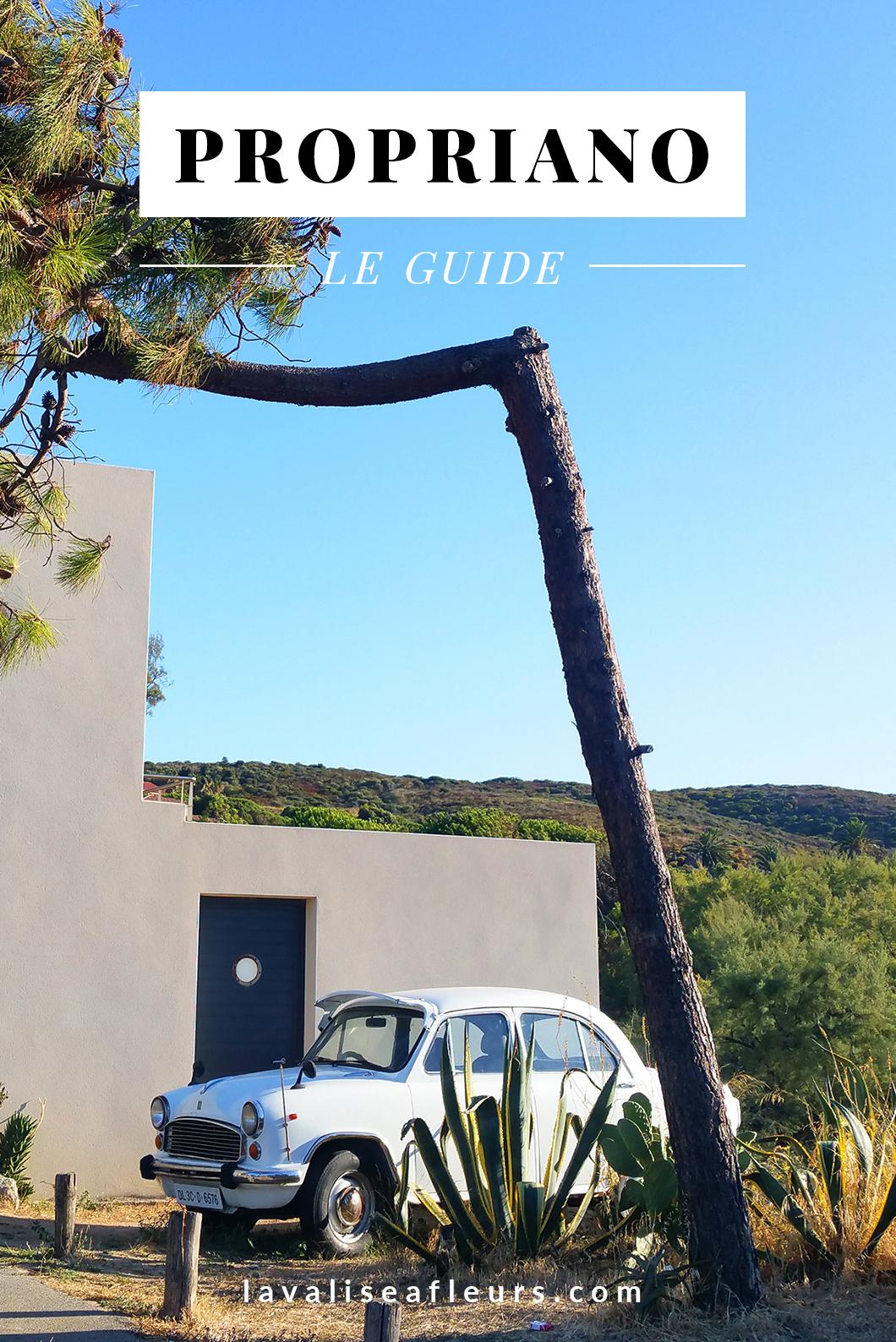 Visiter Propriano en Corse