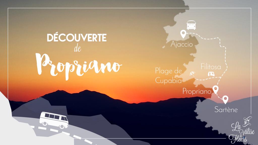 carte voyage Propriano