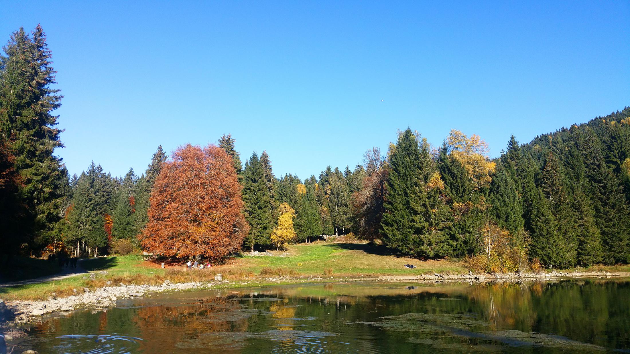 balade lac freydières