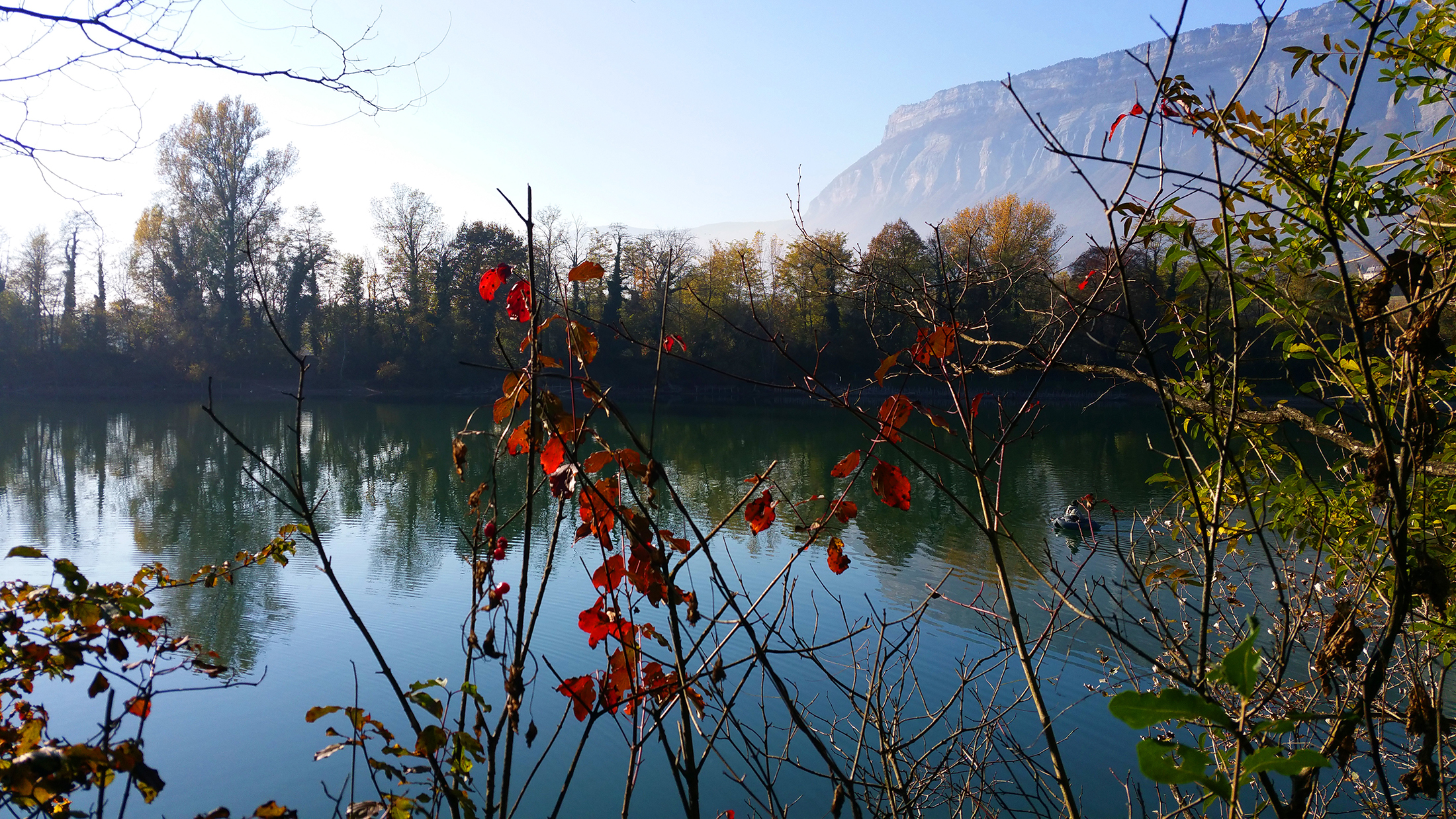 Bois Français automne