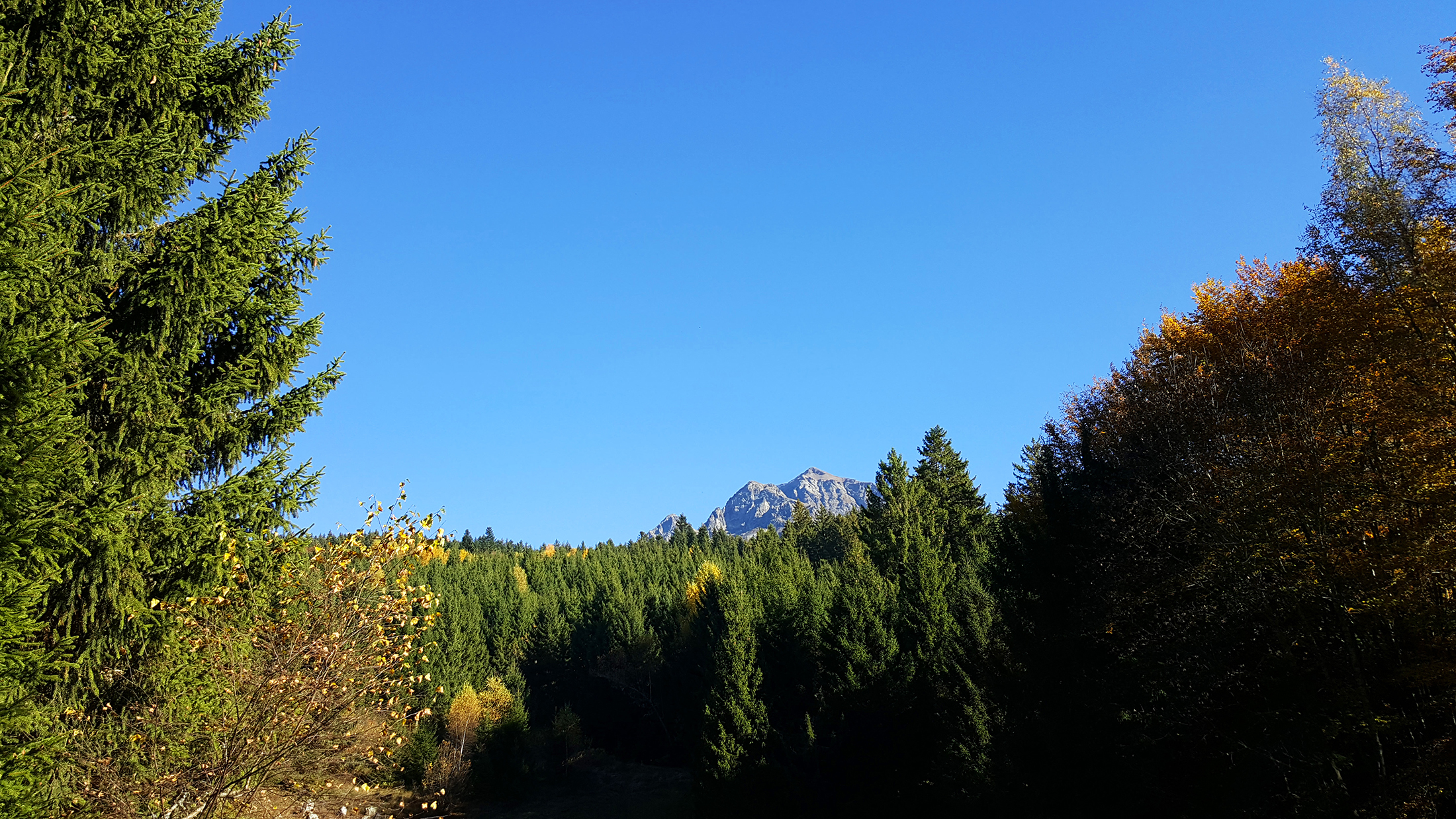 montagne grenoble freydières