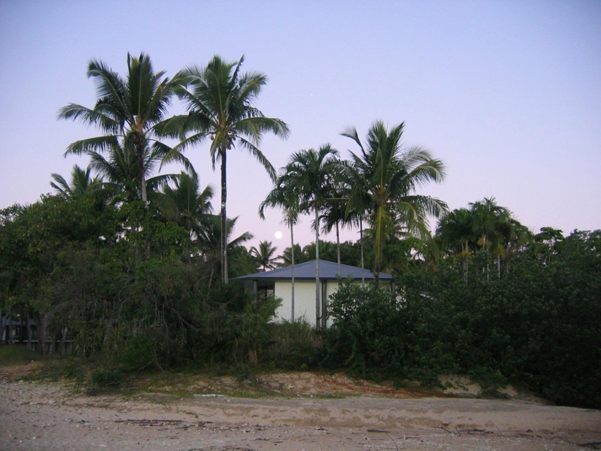 Road trip en Australie - Dunk Island