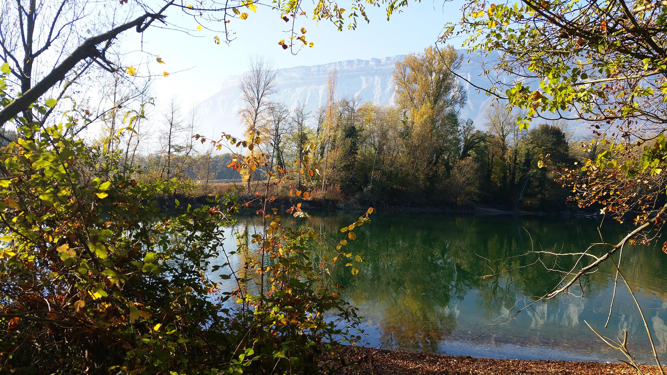 Bois Français Grenoble