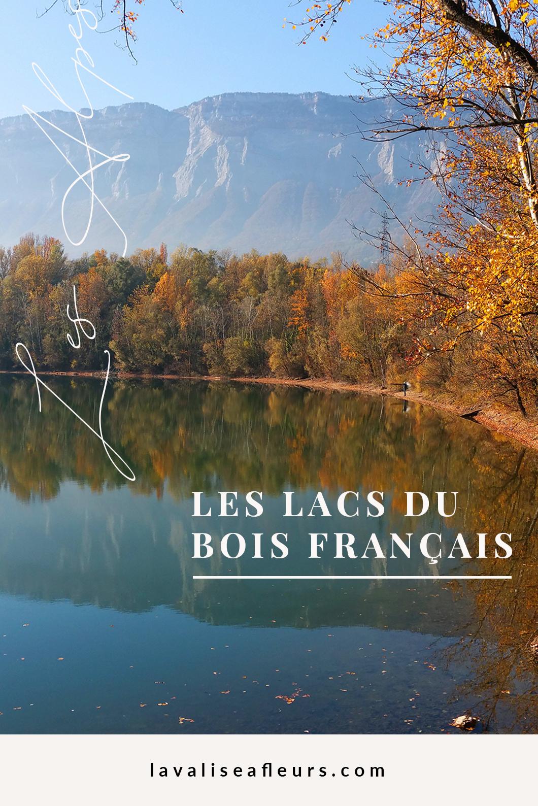 Lacs du bois français dans les Alpes