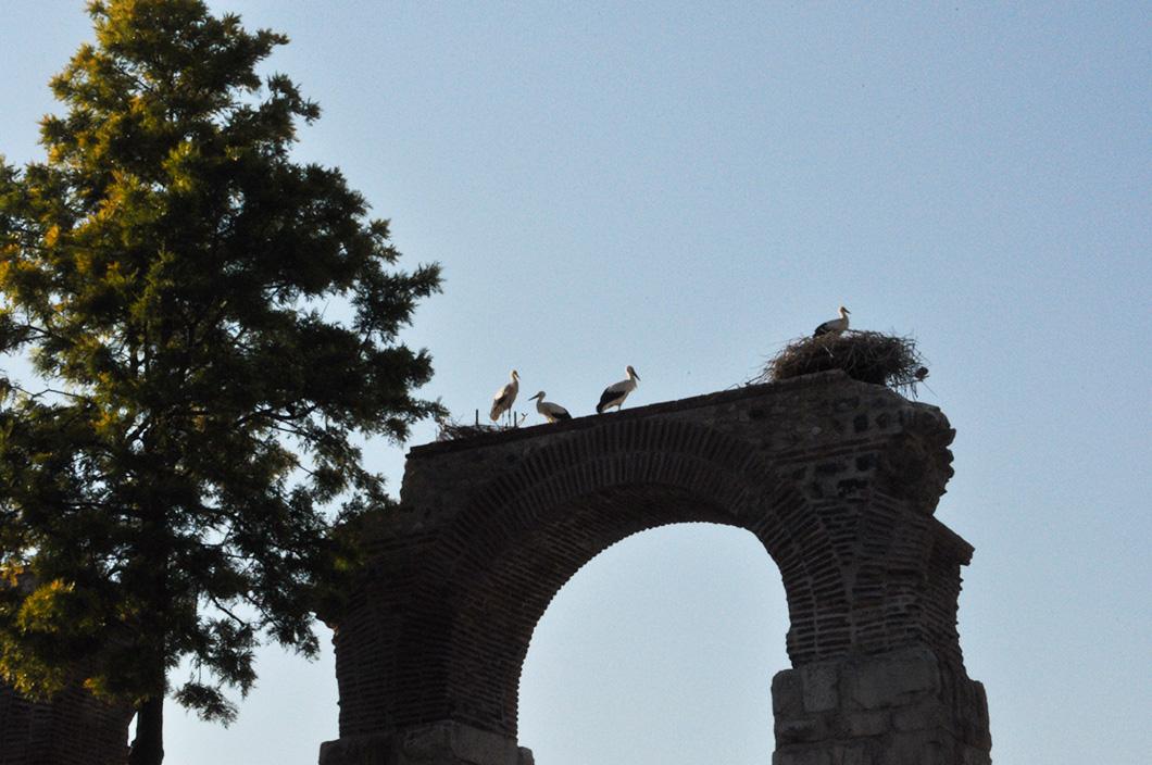 Road trip en Turquie - Izmir