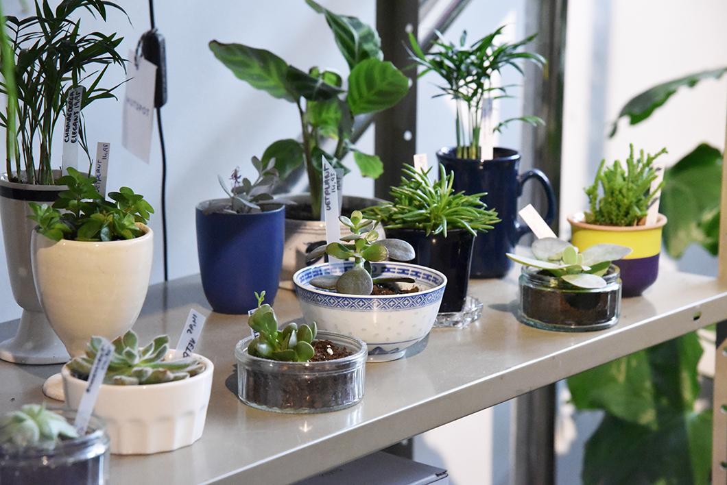 Hutspot - concept store Amsterdam