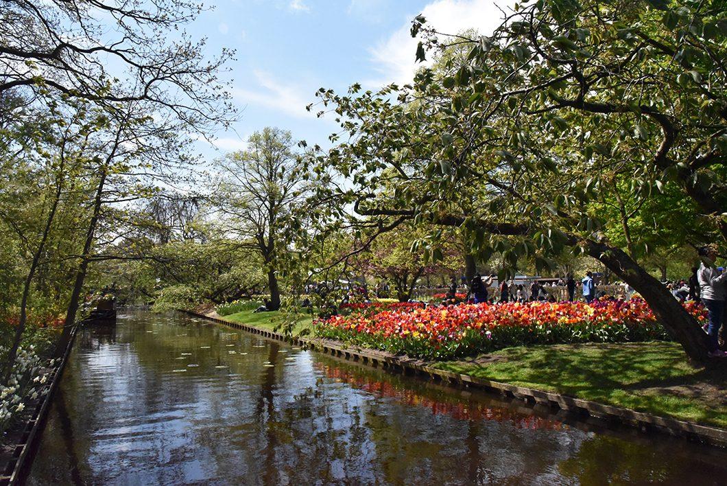 Aller au parc de Keukenhof à 1h de Amsterdam