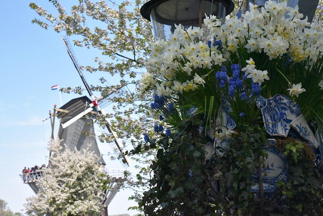 Visite du parc aux tulipes près de Amsterdam