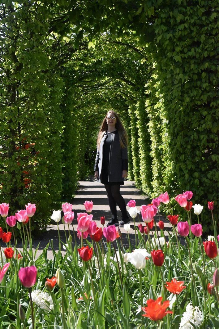Parc aux tulipes en Hollande