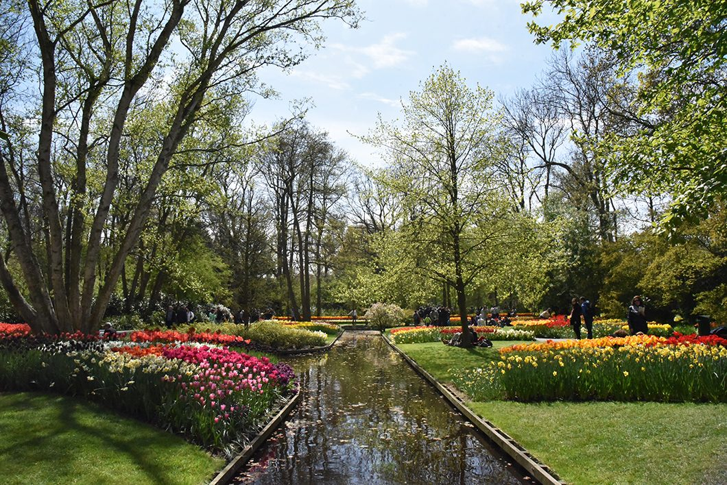 Parc de Keukenhof près de Amsterdam