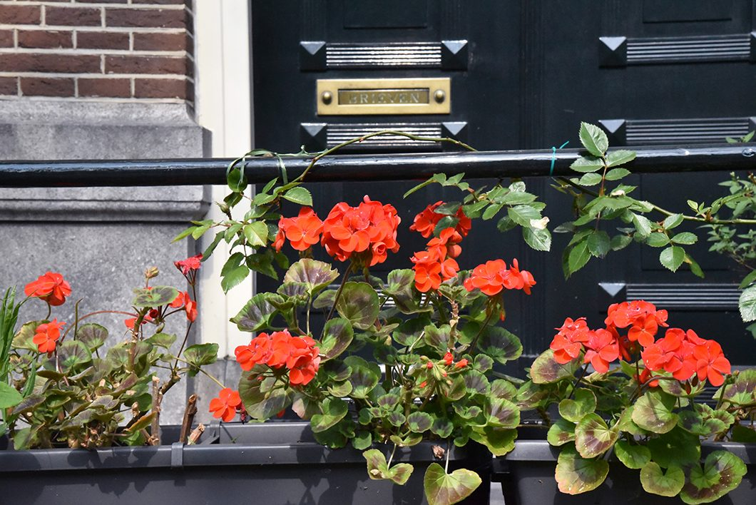 Découverte des Nine Streets à Amsterdam