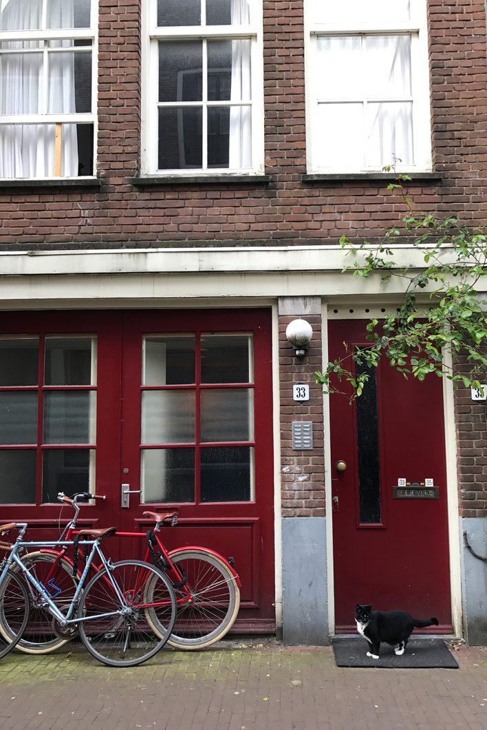 Les jolies façades d'Amsterdam