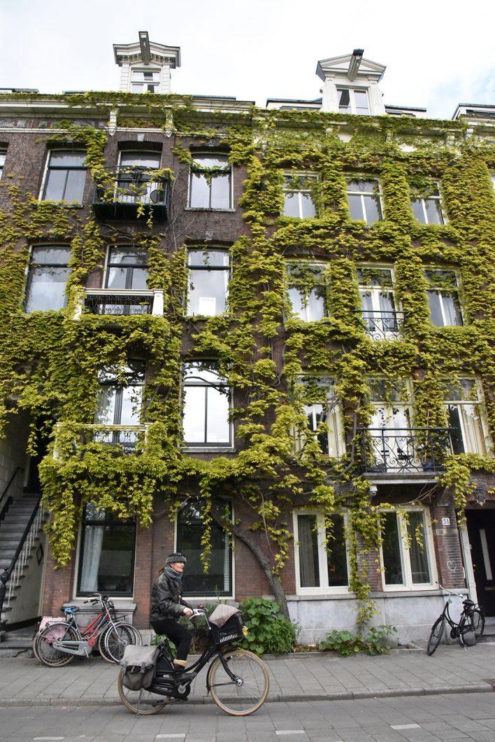 Quartier De Pijp, incontournable à Amsterdam
