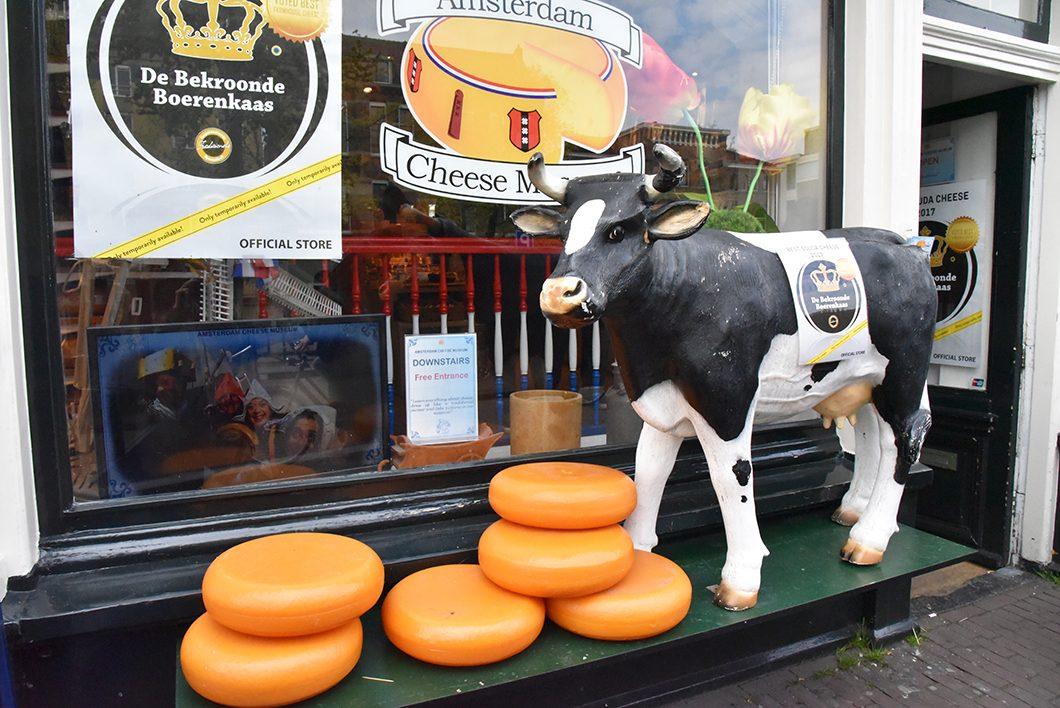 Goûter aux fromages hollandais à Amsterdam