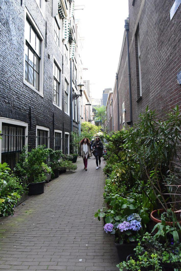 Les meilleurs endroits où se balader à Amsterdam