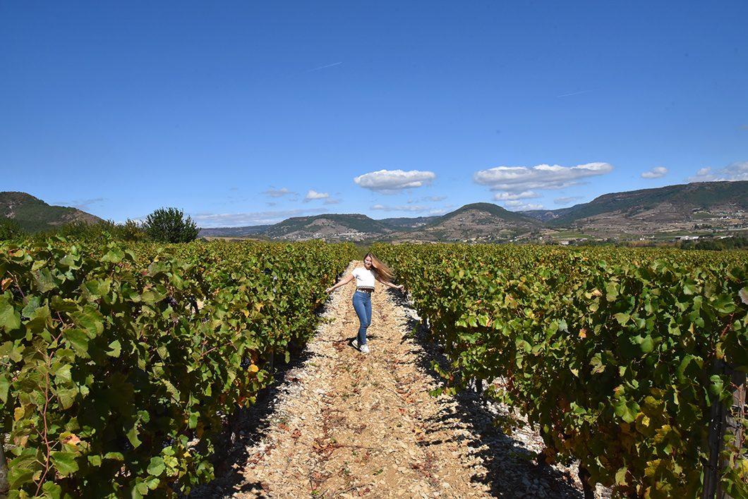 Alba-la-Romaine - Oenotourisme en Ardèche