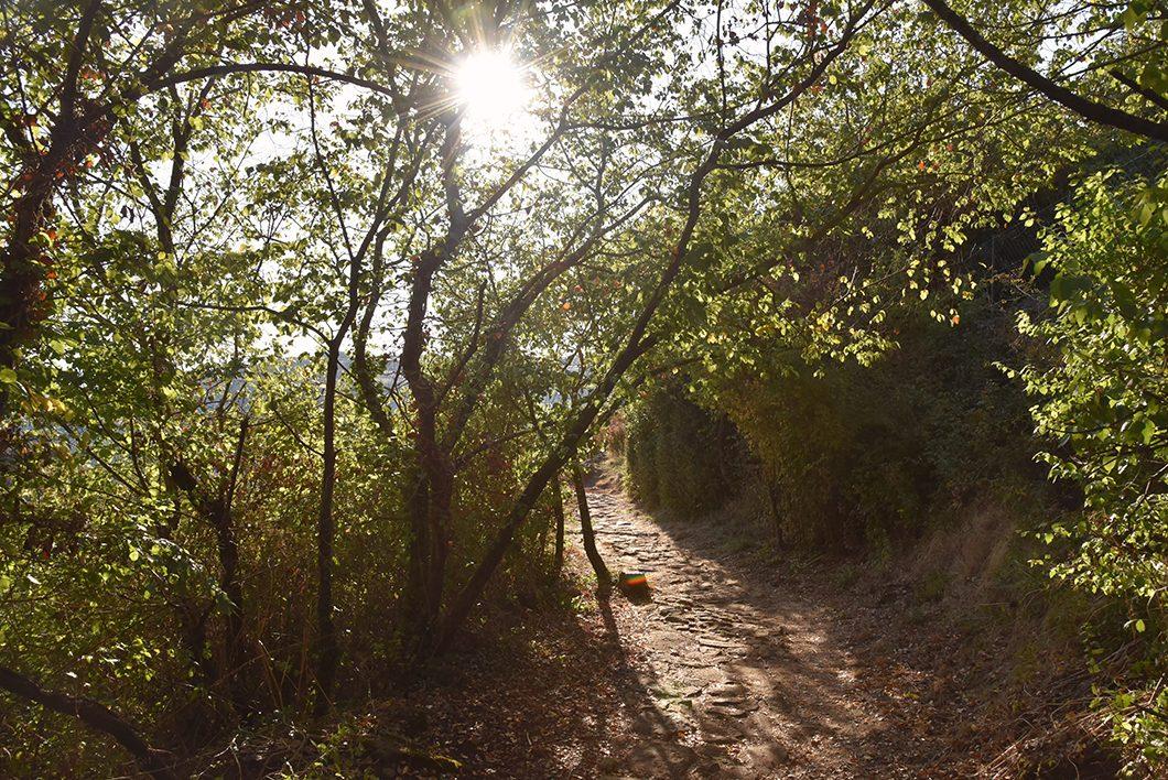 Les Balmes de Montbrun- Ardèche