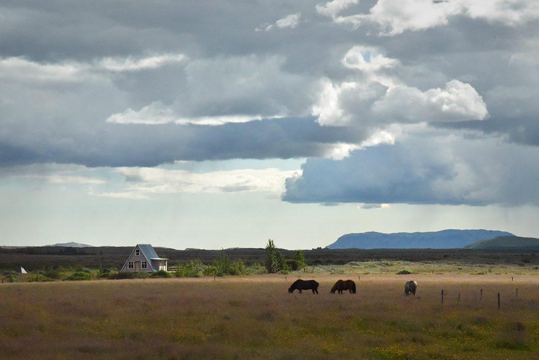 Road trip en Islande - Reykholt