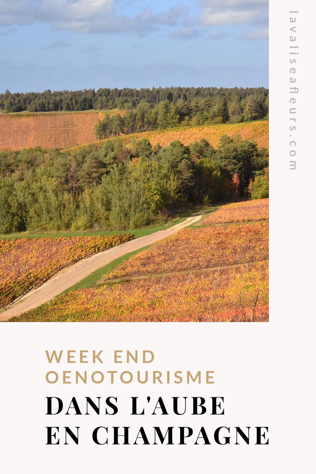 Week end oenotourisme dans l'Aube en champagne