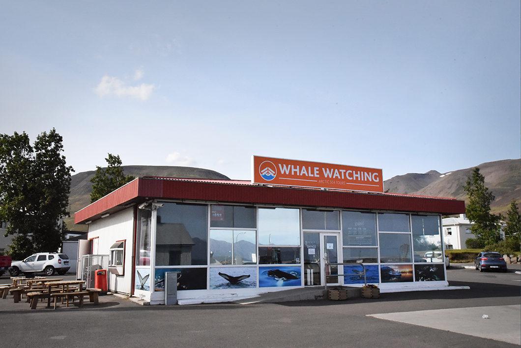 Whale Watching Dalvik