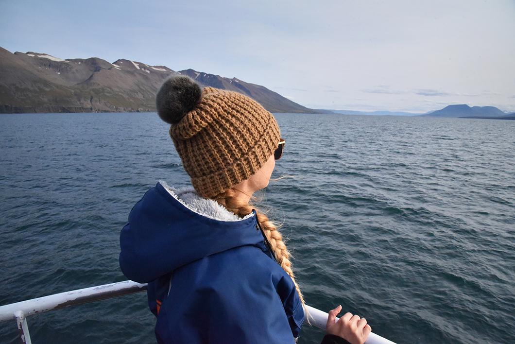 Excursion baleines en Islande
