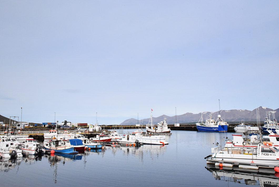 Port de Dalvik