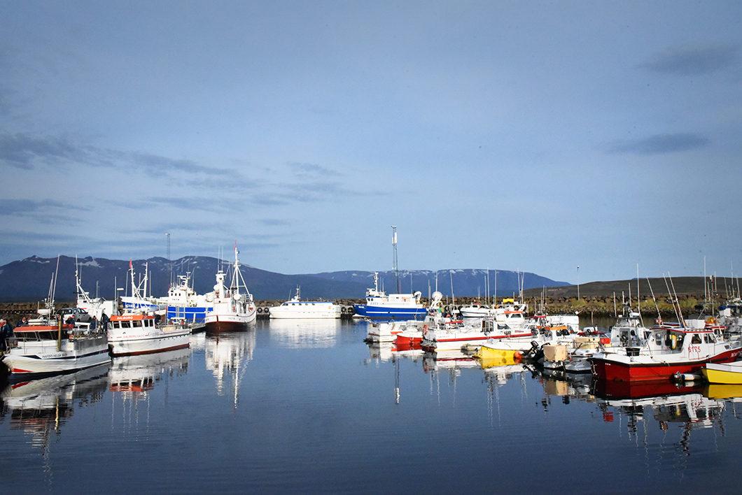 Le joli port coloré de Dalvik