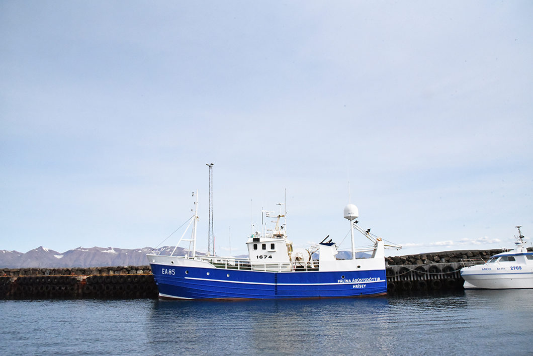 Faire du bateau en Islande