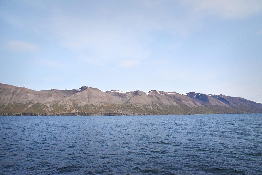 Tour en bateau sur la mer du Groenland