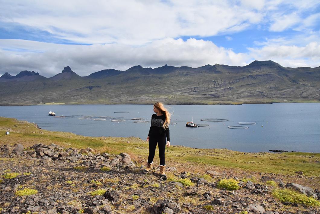 Visiter les Fjords de l'est en Islande