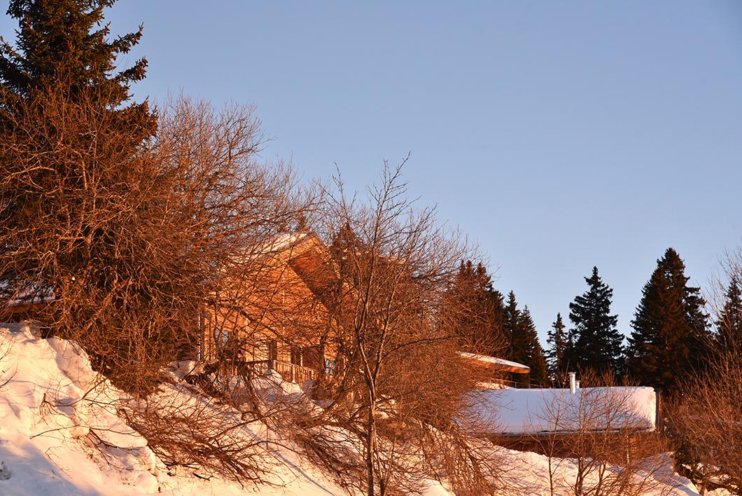 Aller skier à Chamrousse