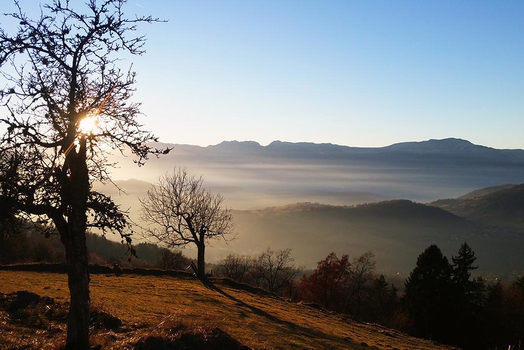 Les marais de Seiglières - Grenoble