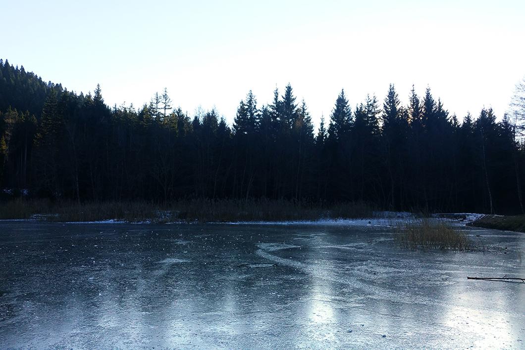 Les marais de Seiglières - Lac gelé