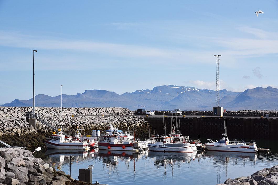 Rif - Péninsule de Snæfellsnes