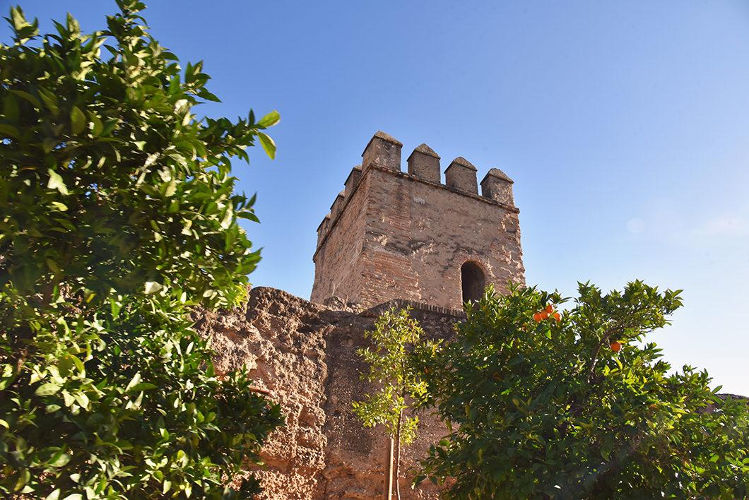 La Basilica of the Macarena, endroits incontournables à Séville en Espagne