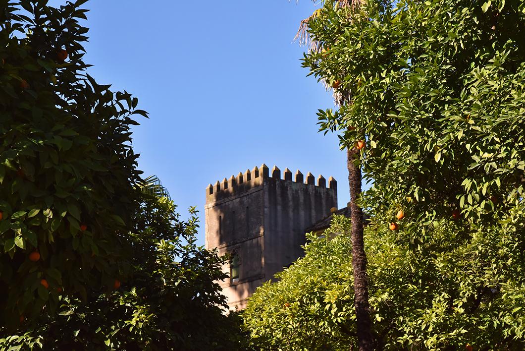 Alcazar et le Jardin Murillo
