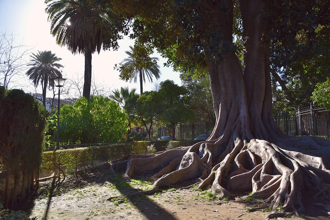 Visiter le Jardin Murillo activité incontournable à Séville