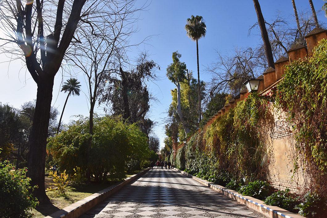 Que visiter à Séville ? Le Jardin Murillo
