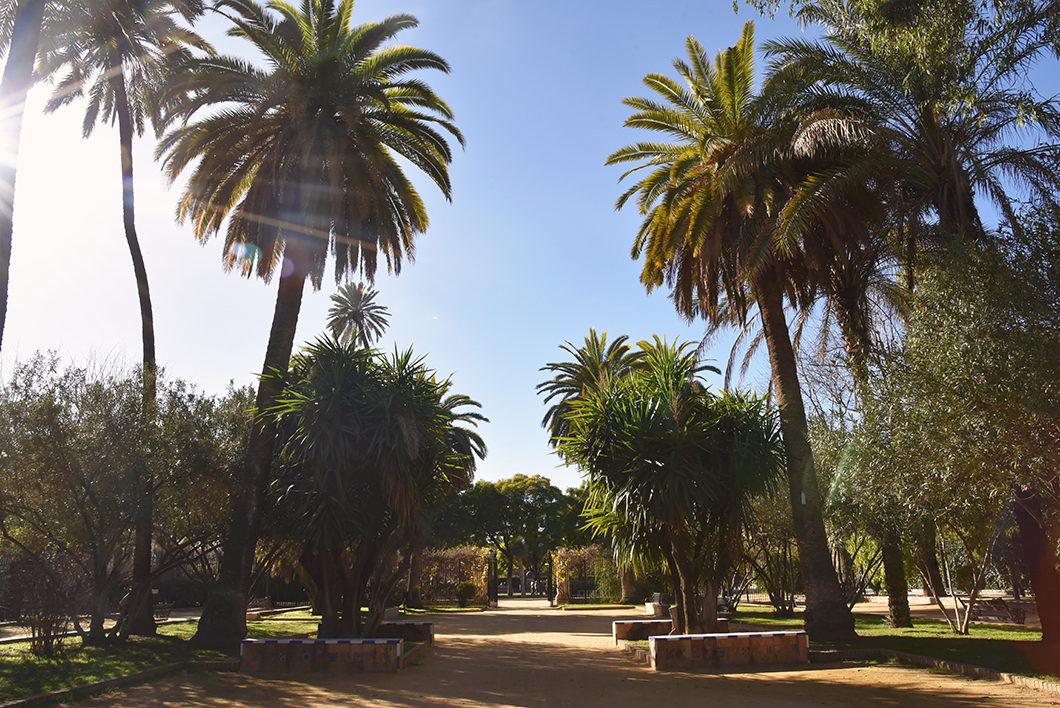 Guide des plus beaux endroits à Séville en Espagne, le Jardin Murillo