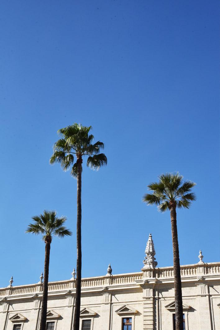 Visite du Quartier Santa Cruz, visite incontournable à Séville