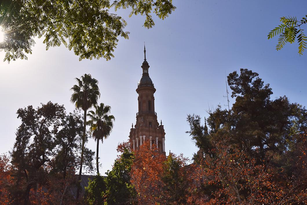 Quartier Santa Cruz à Séville