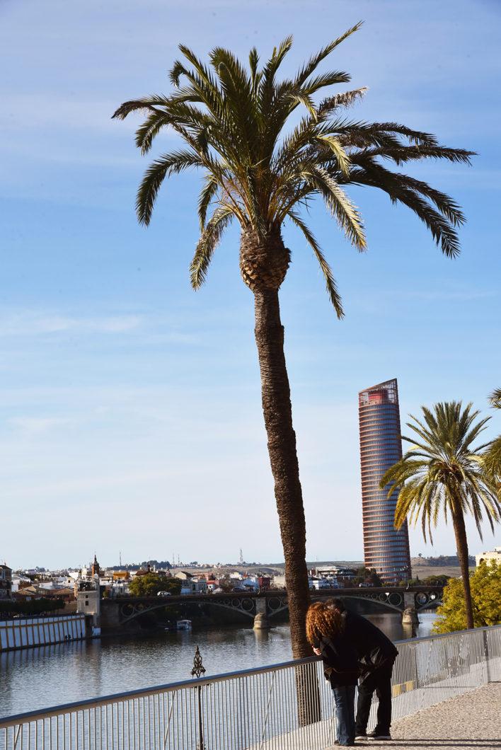 Vue sur les quais de Séville