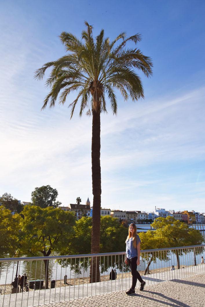 Visite des quais de Séville en Andalousie