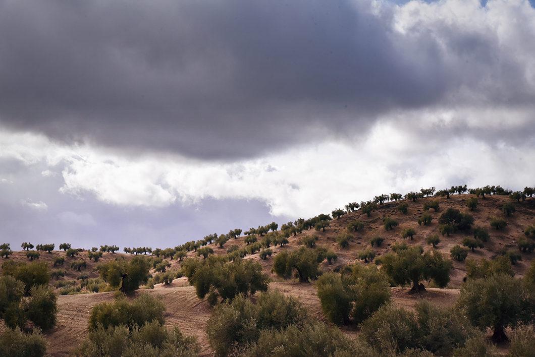 Road trip en Espagne en Andalousie