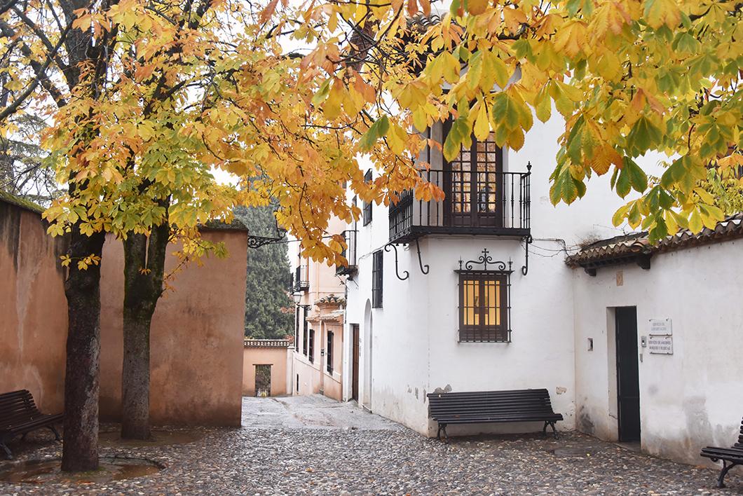 Visiter l'Alhambra en hiver