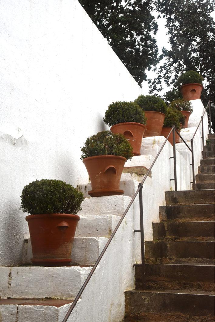 Que faire en Espagne en hiver ? Visiter l'Andalousie