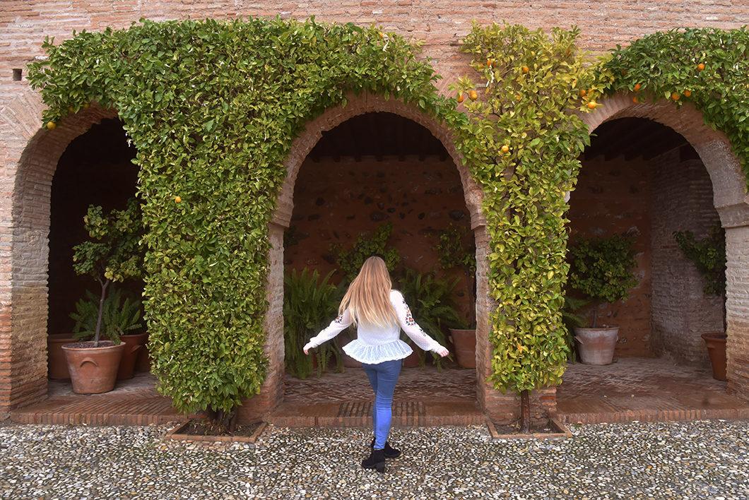 1 journée à l'Alhambra en Espagne