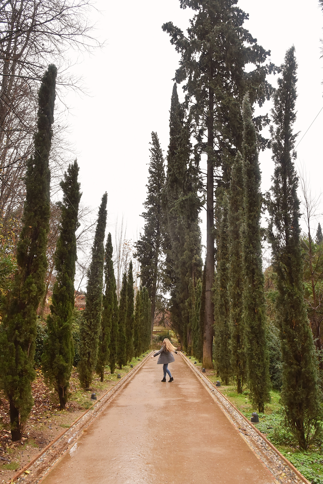 Découvrir l'Alhambra de Grenade en hiver